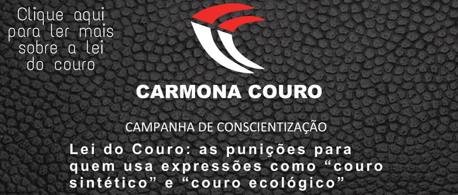 LEI DO COURO